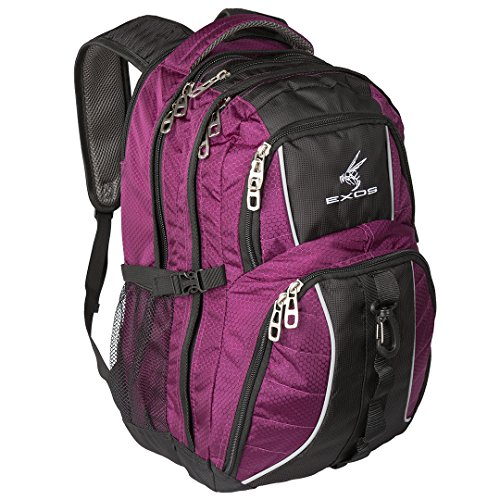 (Exos Backpack, (Laptop, Travel, School or Business) Urban Commuter (Purple with Black Trim))