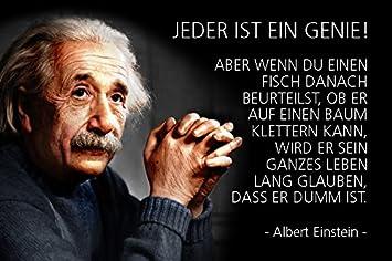 Amazonde Comcard Albert Einstein Jeder Ist Ein Genie