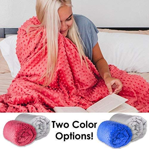 Cheap Sleepah Weighted Blanket (16lb with Cover) Blanket - Includes Soft Fluffy Minky Warm Cover (Washable/Removable) Heavy Blanket (Pink) Black Friday & Cyber Monday 2019