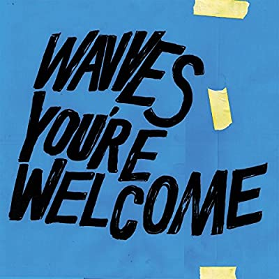 Image result for wavves you're welcome new vinyl art
