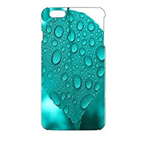 Iphone 6 Plus ( 5.5 Inch ) Case Color 3D Turquoise Series Dew Fresh Leaves Hardshell Cellphone Case