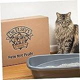 Ultra Premium Clumping Cat Litter
