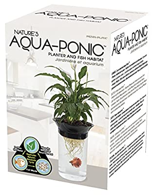 Penn Plax Aquaponic Betta Fish Tank Promotes Healthy Environment for Plants and Fish from Penn Plax, INC.