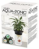 Penn Plax Aquaponic Betta Fish Tank Promotes Healthy Environment for Plants and Fish