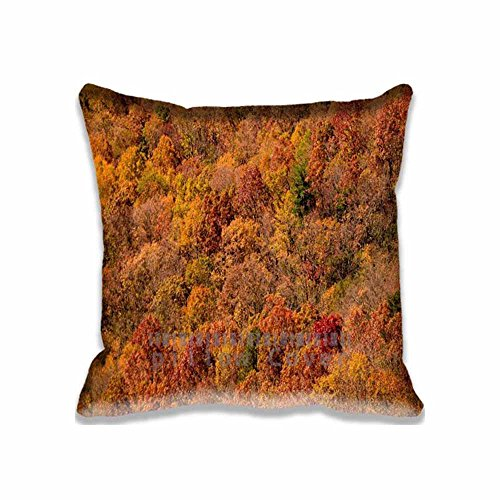 Custom Design Black Rock Mountain State Park Pillow Cases Zippered , 16x16 Square Seasons Pillowcase - Autumn Cushion Covers Two Size (Angry Birds Season 3 Halloween 2-12)