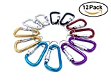 J.C.Y.C Screw Gate Carabiner Aluminum Carabiner D Ring D Clip D Shape Buckle Spring Snap Key Chain Clip Snap Hook Screw Gate Buckle Lock Camping Key Ring 12Pcs Pack