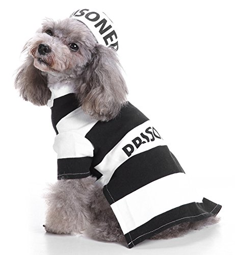 MaruPet Halloween Fancy Prisoners Dogs Cats Warm Costumes with Hat for Teddy, Pug, Chihuahua, Shih Tzu, Yorkshire Terriers, Papillon D-Black/White -