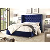 Meridian Furniture AidenNavy-Q Aiden Velvet Upholstered Button Tufted Wingback Bed with Chrome Nailhead Trim and Custom Chrome Legs, Queen, Navy