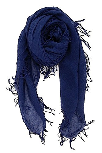 Chan LUU NEW Medieval Blue Beautiful Cashmere & Silk Soft Scarf by Chan Luu