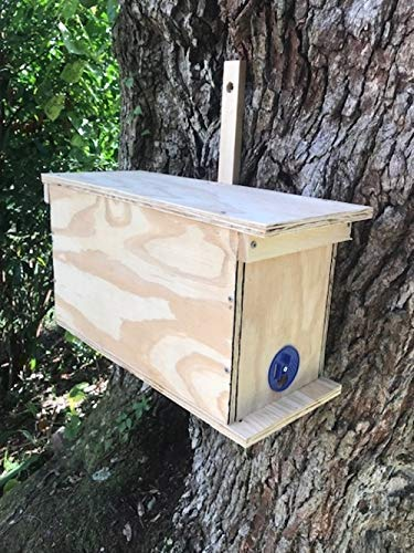 East Coast Bees – Honey Bee Swarm Trap