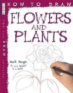 13be0b53cffd75 How to Draw Birds: Amazon.co.uk: Mark Bergin: 9781909645530: Books