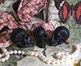 Beeswax 5 Mini Black Skull Candles (1 Set of 5) Free USA Shipping