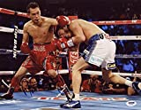 Autographed Nonito Donaire Photo - 11x14 THE FILIPINO FLASH CHAMP - PSA/DNA Certified - Autographed Boxing Photos
