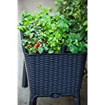 Keter Elevated Garden Bed 12 Dimensions: 44. 9 in. W x 19. 4 in. D x 29. 8 in. H Easy to read water gauge indicates when plants need additional moisture Drainage system that can be opened or closed for full control of watering