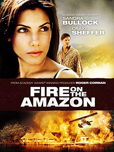 fire on the amazon - 2