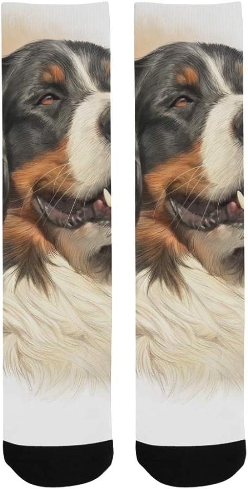 Painted Quiet Cute Cartoon Animal Dog Crazy Dress Troser Sock For bott
