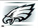WinCraft NFL Philadelphia Eagles 08965021 Static