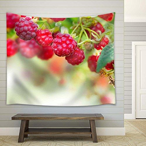 Closeup of Fresh Ripe Berries
