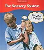 The Sensory System, Sue Barraclough, 1432908774