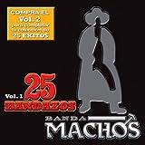 25 Bandazos De Machos Vol. I