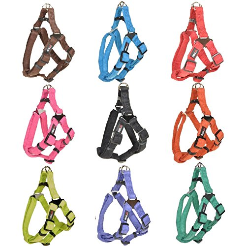 Dogline 19 to 25-Inch Length by 3/4-Inch Width Comfort Microfiber Soft Padded Step-In Puppy Dog Harness with Nylon Reinforcement, Medium, Black