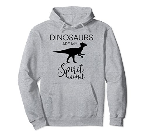 Unisex Cute Funny & Unique Dinosaurs Lover Gift Hoodie J000387 2XL Heather Grey