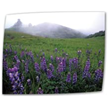 Art Wall Figueroa Mountain with Fog 24 by 36-Inch Flat/Rolled Canvas by Kathy Yates with 2-Inch Accent Border