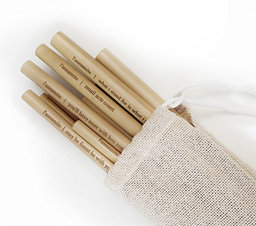 L'annamite Organic Bamboo Drinking Straws - with Quotes - Reusable – Hand-Crafted Natural Alternative to Plastic– Set of 10 by L'ANNAMITE