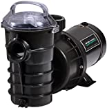Pentair DYNII-N1-1.5HP Dynamo One Speed Aboveground Pool Pump with 3-Feet Standard Cord, 1-1/2 HP