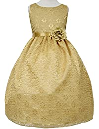 Amazon.com: Gold - Dresses / Clothing: Clothing, Shoes & Jewelry