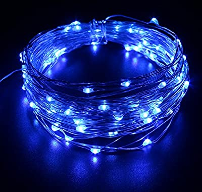 BrightTouch LED String Lights