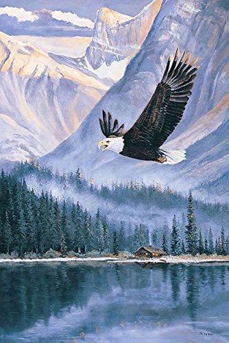 Toland Home Garden Fishing Eagle Decorative Birds/Outdoors House Yard Flag, 28
