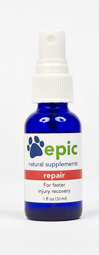 Repair Best Selling Natural Electrolyte Odorless Pet Supplement for Faster Injury and Illness Recovery