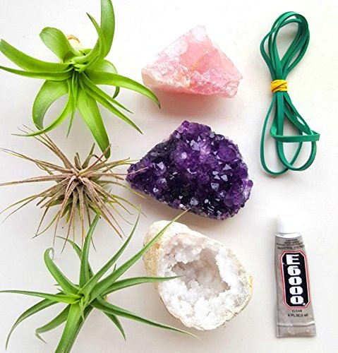3 Pcs Tillandsia Air Plant Crystals Kit/Lot Includes Amethyst Cluster, Rose Quartz, and Crystal Geode/Terrarium Fairy Garden Stones + Kraft Gift Box by Aura Creations