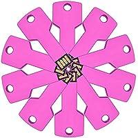 FEBNISCTE 10 Pack 2GB Promational Gift Metal Key USB2.0 Flash Drive - Pink