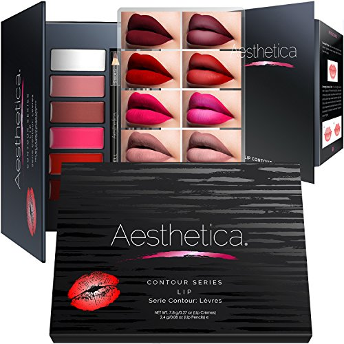 Aesthetica Matte Lip Contour Kit - Lipstick Palette Set Includes 6 Lip Colors, 4 Lip Liners, Lip Brush and Instructions (Best Pink Mac Lipstick For Fair Skin)