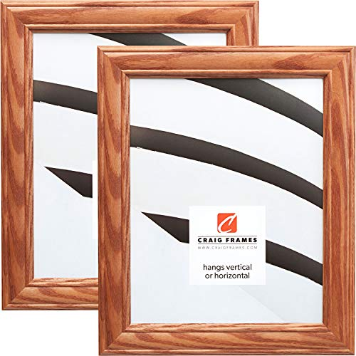 Craig Frames 59504100 5 x 7 Inch Picture Frame, Honey Brown, Set of 2 -