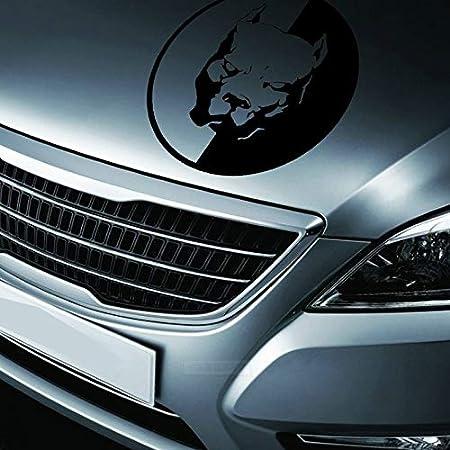 longyitrade 18x18cm Pitbull Design Vinile Impermeabile Rimovibile Modello di Auto Decalcomania 2#