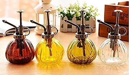 230/ml Flacon vaporisateur en verre style r/étro /à pression manuelle Arrosoir TM Flacon vaporisateur en verre Outil darrosage pour le soin des plantes du jardin Green Y/&M