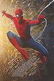 #10: Spider-Man: Homecoming - Authentic Original 27