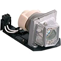Litance Projector Lamp Replacement for Optoma BL-FP230D, HD20, HD22, HD200X, HD2200, TX615, TX612, EX612, EX615, HT1080, EH1020, TH1020, HD180, HD200X-LV and More