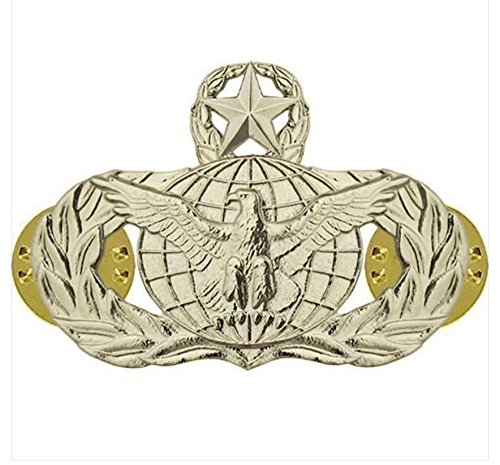 Vanguard AIR FORCE BADGE: FORCE PROTECTION: MASTER - REGULATION SIZE