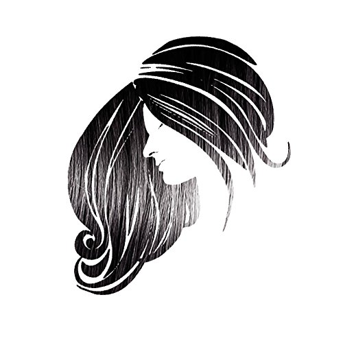 Henna Maiden ENVIOUS BLACK Hair Color: 100% Natural & Chemical Free by Henna King