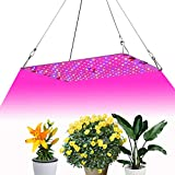 LED Grow Light, Aceple 20W Indoor Growing Ultra-Thin Panel Plant Light with Switch and Plug, 2 Sizes Variable for Greenhouse Hydroponic Indoor Plants Veg Flower