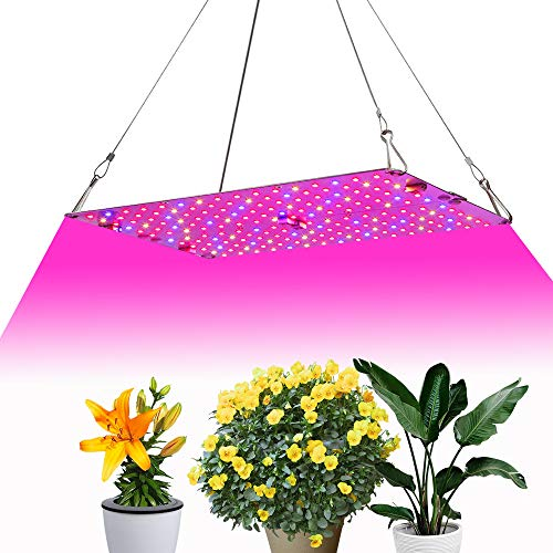 6W Led Grow Light in US - 8