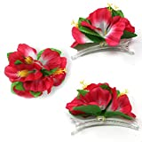Joyin Toy 18 Pieces Hawaiian Luau Flower Lei Hair Clip Set (18 pcs)