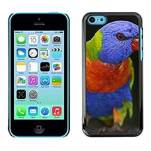 Print Motif Coque de protection Case Cover // M00313085 Roca piedras recorrido Naturaleza // Apple iPhone 5C