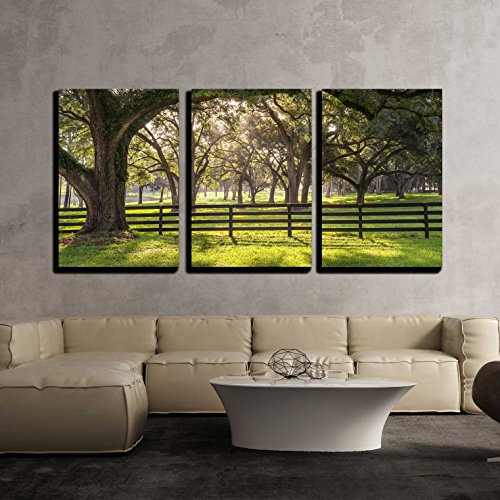 Large Oak Tree Branch with Farm Fence in the Rural Countryside Looking Serene x3 Panels