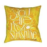 Best Thumbprintz Pillows - Thumbprintz You are my Sunshine Floor Pillow 14 Review