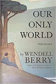 wendell berry essays amazon Encuentra citizenship papers: essays de wendell berry (isbn: 9781619024472) en amazon envíos gratis a partir de 19.